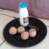 DIY Mangeoire et Boules de Graines pour les oiseaux